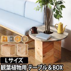 ミニテーブル&プランターカバー プランツテーブル & ボックス Lセット 60cm PLT Plants Table & Box プランター 植木鉢 鉢植え 観葉植