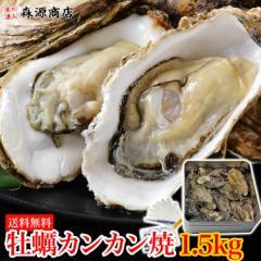 牡蠣 殻付き カンカン焼き セット 1.5kg かき カキ BBQ バーベキュー 缶入り (牡蛎ナイフ・軍手・レシピ付) カキ かき のし対応可能 送