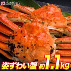 かに 蟹 カニ ズワイガニ 高級カナダ産 姿ずわい蟹2尾セット 合計約1.2kg 大サイズ ボイル 送料無料 冷凍便 お取り寄せ ギフト 食品 備蓄