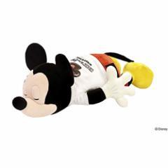 ディズニー セレブレーションアートコレクションにぎにぎクッション イヤーハット 50027-03