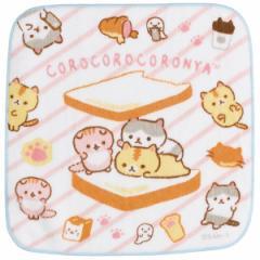 (10) ころころコロニャ ぷらむちゃんがコロニャのパンニャさんにあそびにきたニャテーマ プチタオル CM08812