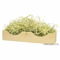 三晃商会 牧草カウンター 【ウサギ 牧草入れ 飼育用品 食器 モルモット チンチラ デグー】