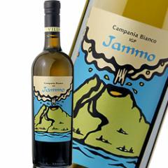 白ワイン ヴィッラ・マティルデ ヤンモ ビアンコカンパーニア イタリア 750ml