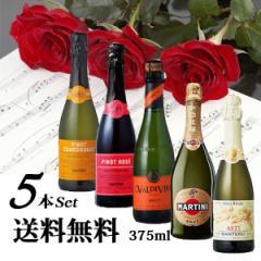 スパークリングワイン ハーフサイズ 5本飲み比べセット 【送料無料】375ml×5本