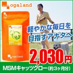 MSM&キャッツクロー(約3ヶ月分) キャッツクロー 健康維持 激安 特価 サプリ イソテロポディン _JH _3K