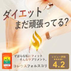 コレウスフォルスコリ(約1ヶ月分) サプリメント サプリ 食物繊維 ダイエット 健康食品 ぽっきり _JD _1K _在管