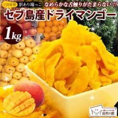 マンゴー 訳あり 不揃い セブ島 半生ドライマンゴー 1kg ドライフルーツ 果物 訳あり おつまみ ダイエット 送料無料