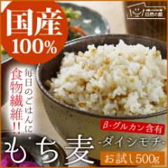 【半額】国産もち麦 500g ダイシモチ 訳あり 簡易包装 大麦 送料無料 大麦 米 もちむぎ 自然の館 雑穀 雑穀米 もちむぎ