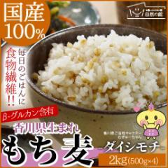 国産もち麦 2kg(500g×2) ダイシモチ 大麦 送料無料 訳あり 訳アリ 自然の館 雑穀 雑穀米 自然の館