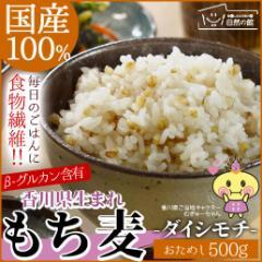 国産もち麦 500g ダイシモチ 訳あり 簡易包装 大麦 送料無料 大麦 米 もちむぎ 雑穀