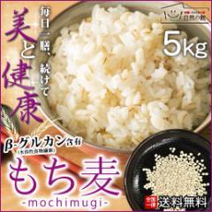 もち麦 5kg(500g×10) 雑穀 雑穀米 大麦 送料無料 米 お米 もちむぎ 訳あり簡易包装 自然の館 予約9/25〜9/28出荷