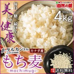 もち麦 4kg (500g×8) 館のもち麦ダイエット βグルカン 大麦 送料無料 ごはん【予約7/23〜7/27出荷】