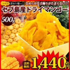 送料無料 不揃い セブ島 ドライマンゴー500g ドライフルーツ 果物 訳あり おつまみ スイーツ 自然の館