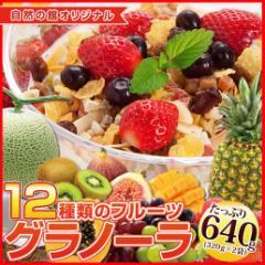 大麦配合 12種類のフルーツグラノーラ 合計640g(320g×2)  大麦 食物繊維 オオムギ 自然の館 簡易包装