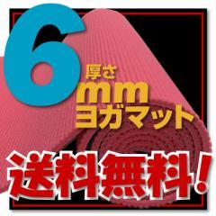【送料無料!】【レビュー書き込みでさらに専用メッシュケースをプレゼント!】厚さ6mm ヨガマットクッション性抜群!! 骨盤エクササ