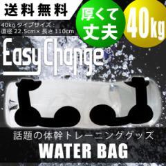 ウォーターバッグ EasyChange イージーチェンジ 40kg (体幹トレーニング 筋トレ フィットネス)