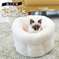 あったか用品 マルカン 極上仕様 セレブなにゃんこベッド ■ 猫用品 ベッド・マット marukan 月特