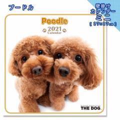 2021年 THE DOG カレンダー【ミニ】 プードル ■ 壁掛けカレンダー 写真 ポスター ザドッグ  月特