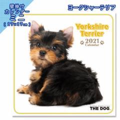 2021年 THE DOG カレンダー【ミニ】 ヨークシャーテリア ■ 壁掛けカレンダー 写真 ポスター ザドッグ  月特