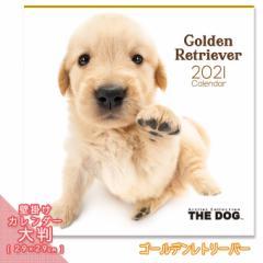2021年 THE DOG カレンダー【大判】 ゴールデンレトリーバー ■ 壁掛けカレンダー 写真 ポスター ザドッグ  月特