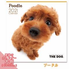 2021年 THE DOG カレンダー【大判】 プードル ■ 壁掛けカレンダー 写真 ポスター ザドッグ  月特