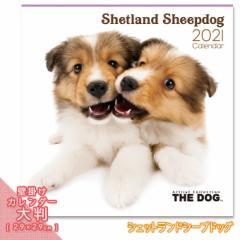 2021年 THE DOG カレンダー【大判】 シェットランドシープドッグ ■ 壁掛けカレンダー 写真 ポスター ザドッグ  月特