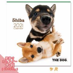 2021年 THE DOG カレンダー【大判】 シバ ■ 壁掛けカレンダー 写真 ポスター ザドッグ  月特
