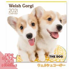 2021年 THE DOG カレンダー【大判】 ウェルシュコーギー ■ 壁掛けカレンダー 写真 ポスター ザドッグ  月特