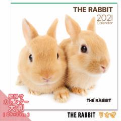 2021年 THE RABBIT カレンダー【大判】 ■ 壁掛けカレンダー 写真 ポスター ザラビット  月特