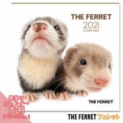 2021年 THE FERRET カレンダー【大判】 ■ 壁掛けカレンダー 写真 ポスター ザフェレット  月特