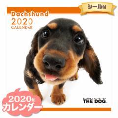 THE DOG カレンダー 2020年 ダックスフンド ■ CALENDAR カレンダ— カレンダ ポスター 壁掛け ブックレット 犬 ドッグ ドック