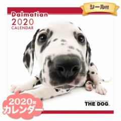 THE DOG カレンダー 2020年 ダルメシアン ■ CALENDAR カレンダ— カレンダ ポスター 壁掛け ブックレット 犬 ドッグ ドック