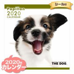 THE DOG カレンダー 2020年 パピヨン ■ CALENDAR カレンダ— カレンダ ポスター 壁掛け ブックレット 犬 ドッグ ドック