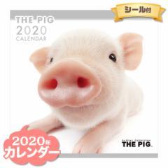 THE PIG カレンダー 2020年  ■ CALENDAR カレンダ— カレンダ ポスター 壁掛け ブックレット 小動物 豚 ぶた ブタ