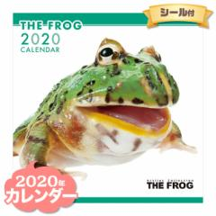 THE FROG カレンダー 2020年  ■ CALENDAR カレンダ— カレンダ ポスター 壁掛け ブックレット 小動物 カエル かえる
