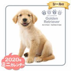 ミニ カレンダー 2020年 ゴールデンレトリーバー ■ CALENDAR カレンダ— カレンダ ポスター 壁掛け ブックレット 犬 ドッグ ドック