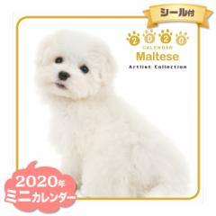 ミニ カレンダー 2020年 マルチーズ ■ CALENDAR カレンダ— カレンダ ポスター 壁掛け ブックレット 犬 ドッグ ドック