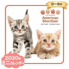 ミニ カレンダー 2020年 アメリカンショートヘア ■ CALENDAR カレンダ— カレンダ ポスター 壁掛け ブックレット 猫 ねこ キャット