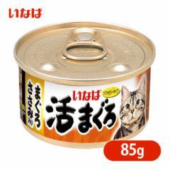 キャットフード ウェット いなば 活まぐろ まぐろ ささみ入り 85g ■ 成猫 アダルト 猫缶 缶詰 ソフト ゼリータイプ 一般食 魚