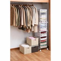 衣類収納ラック ワイシャツ 収納ラック(縦型) カバー付きクローゼット内収納 sei-wr-1  /NP 後払い/北欧/インテリア/セール/モダン/送料