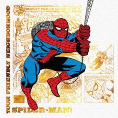 スパイダーマン ファブリックパネル アートパネル MARVEL Spider Man Mサイズ 30cm×30cm lib-4121927s1  /NP 後払い/北欧/インテリア/セ