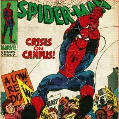 スパイダーマン ファブリックパネル アートパネル MARVEL Spider Man Mサイズ 30cm×30cm lib-4122184s1  /NP 後払い/北欧/インテリア/セ