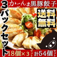 父の日 鹿児島県産黒豚入り かごんま餃子 54個(18個入り×3パック) 送料無料