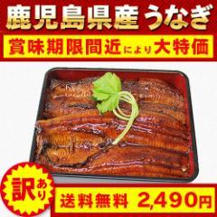 訳あり 賞味期限間近 うなぎ 鹿児島県産 鰻 蒲焼 1尾 約170g 送料無料
