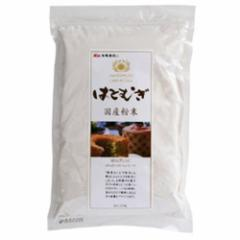 【創健社】国産 はとむぎ 粉末 220g