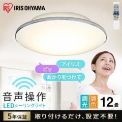 LEDシーリングライト 5.11 音声操作 モールフレーム 12畳 調色 CL12DL-5.11MV シーリングライト シーリング ライト らいと メタルサーキ