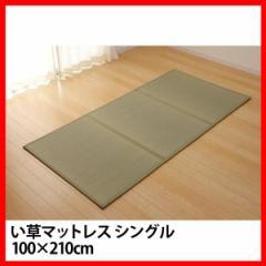 い草マットレス シングル 約100×210cm   プラザセレクト 送料無料【代引不可】