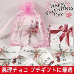 バレンタイン チョコレート ほんの気持ちですチョコ 義理チョコ 2019 プチギフト 5粒 巾着袋入り