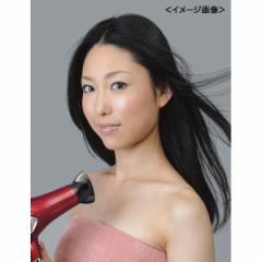 ドライヤー フカイ ハイパワーデジドラ美容 ヘルス ビューティー/FPWD-7000
