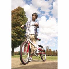 20型折りたたみ自転車 6段変速 スウィツスポートアウトドア スポーツ/SW-SK20W